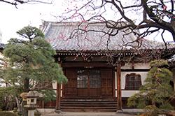 130217東京 榮松院の椎⑧
