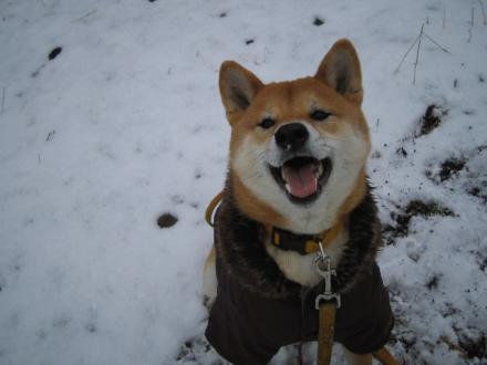 snow-day5.jpg