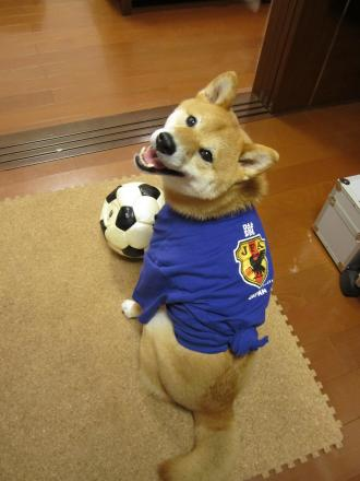 world-cup3.jpg