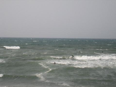 七里ケ浜2