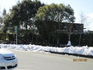 1115 雪2