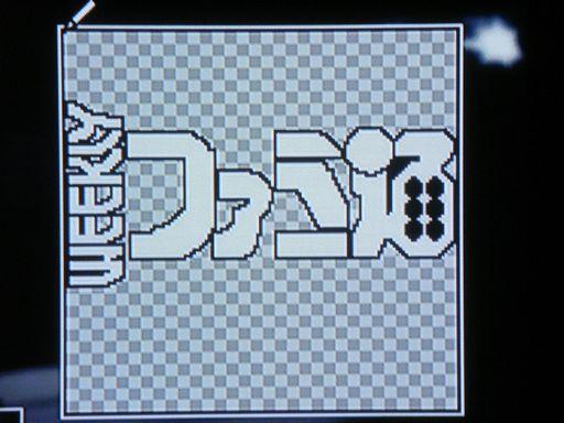 TAO 菊タロー 010