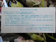 DSC01857.jpg