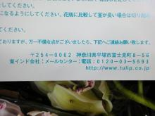 DSC01858.jpg