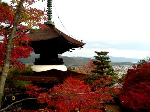 09嵐山4