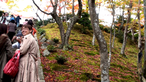 09嵐山9