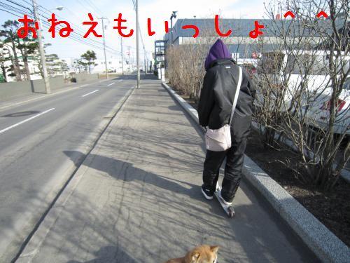 IMG_0344_convert_20100409223129.jpg