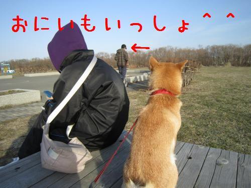 IMG_0354_convert_20100409223309.jpg