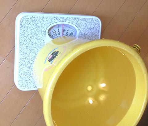 バケツの水の重さ(小)