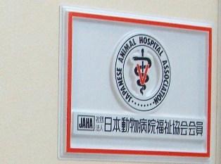 201007-動物病院 (8)