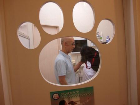 201007-動物病院
