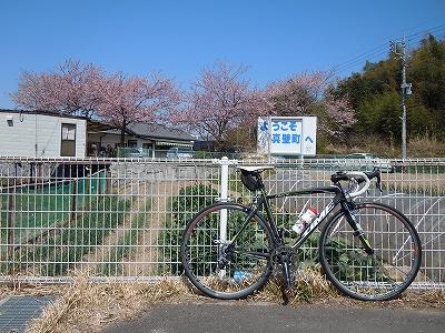 s-DSCN1403.jpg