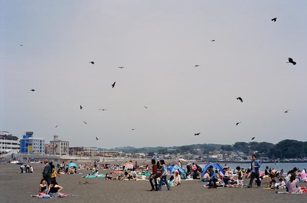 20100502江の島su14