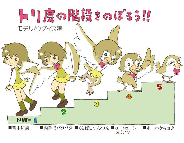 birds02.jpg