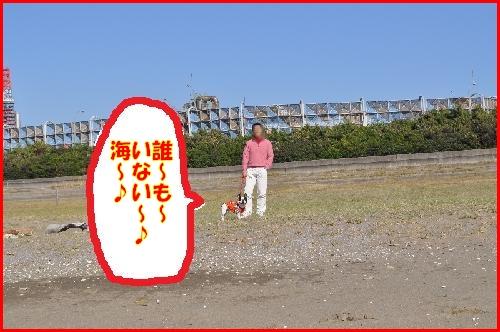 幕張海10