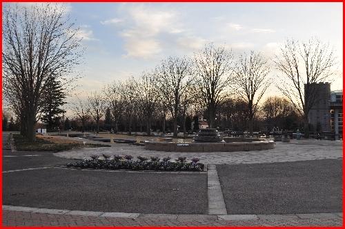わんぱく公園n