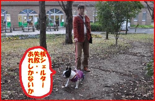 わんぱく公園14