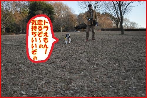 9日公園2