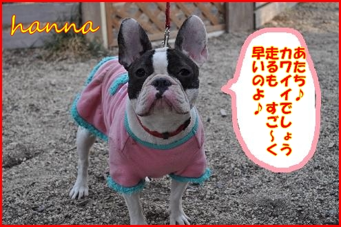 初ラン(ハンナ)