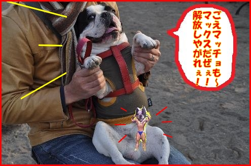 初ラン(五右衛門2)