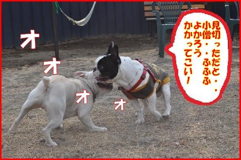妄想劇場6