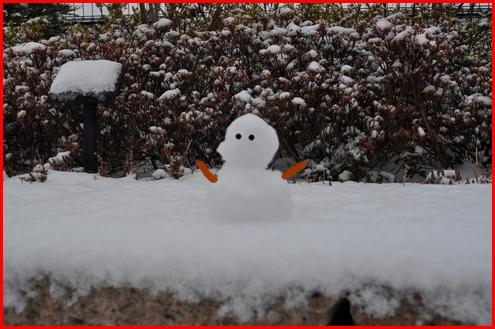 2回目雪0