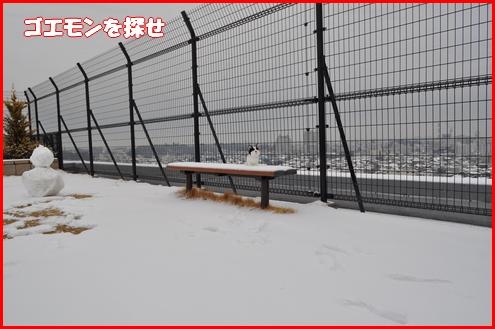 2回目雪4