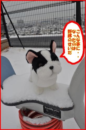 2回目雪9