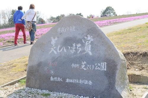 2010芝桜2
