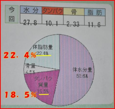 2010611-6