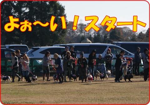 2010123-1.jpg