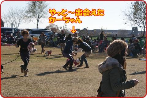 2010123-10.jpg