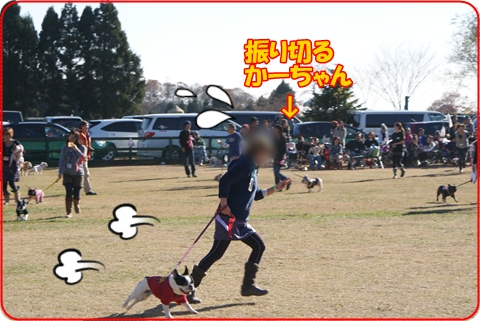 2010123-5.jpg
