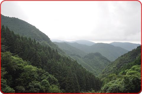 2010813-6.jpg