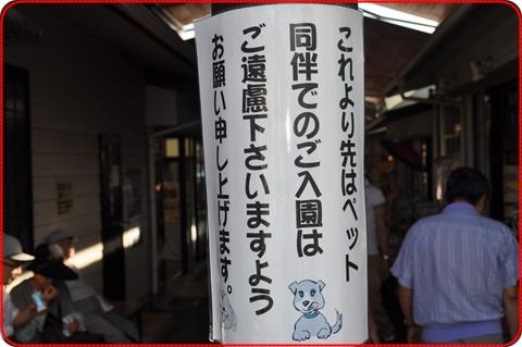 2010922-13.jpg