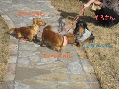 20100127tenphu.jpg