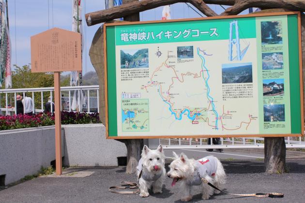 竜神峡・047_convert_20100509002758