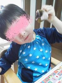初桜餅blg