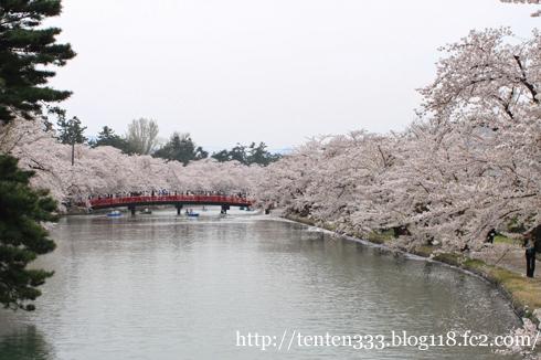 弘前桜2010-3_e
