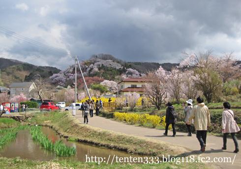 花見山-3_e