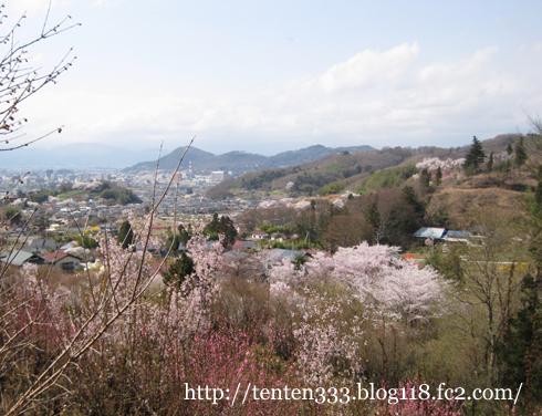 花見山(2)-3_e