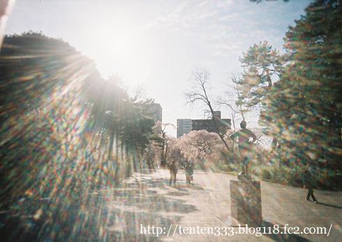 榴ヶ岡2011-7_e