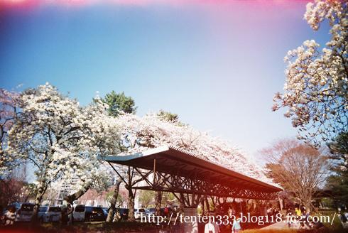 榴ヶ岡2011-9_e