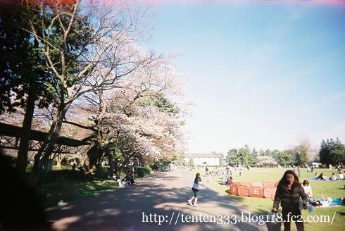 榴ヶ岡2011-5_e
