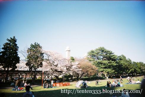 榴ヶ岡2011-6_e