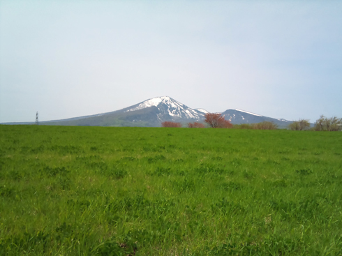 八甲田と牧場-2