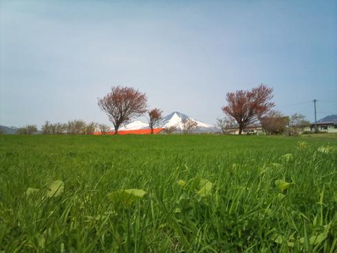 八甲田と牧場-1