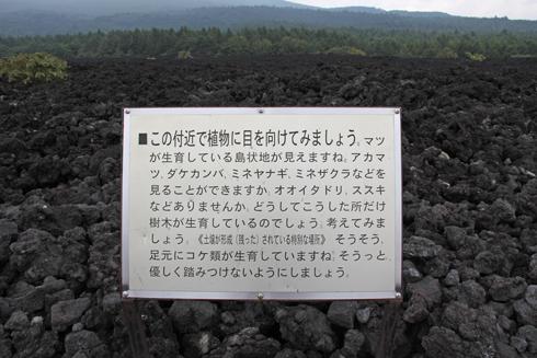 溶岩流-5