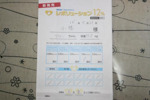 IMG_2818_convert_20100526235529[1]