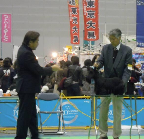 2013 02 10 004-m1